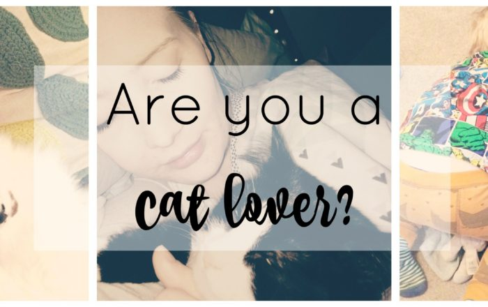 Are You A Cat Lover?