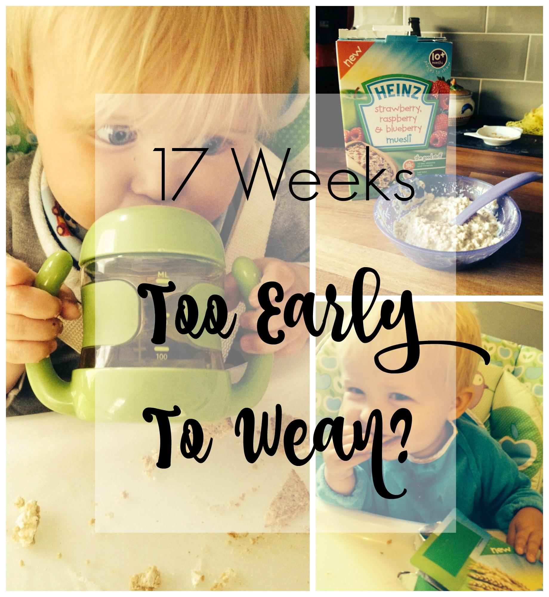 17-weeks-pin