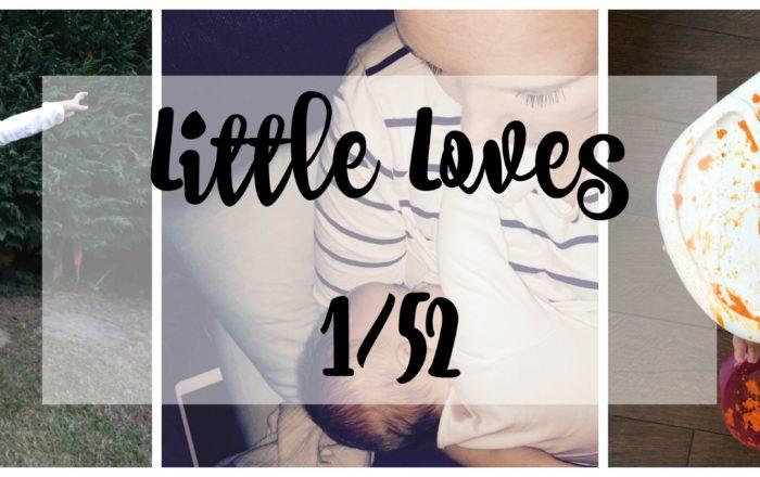 Family Time, Zoo Walks & Winter Illness #LittleLoves 1/52
