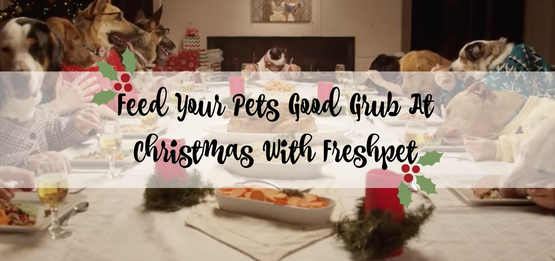 Feed Your Pets Good Grub At Christmas With Freshpet