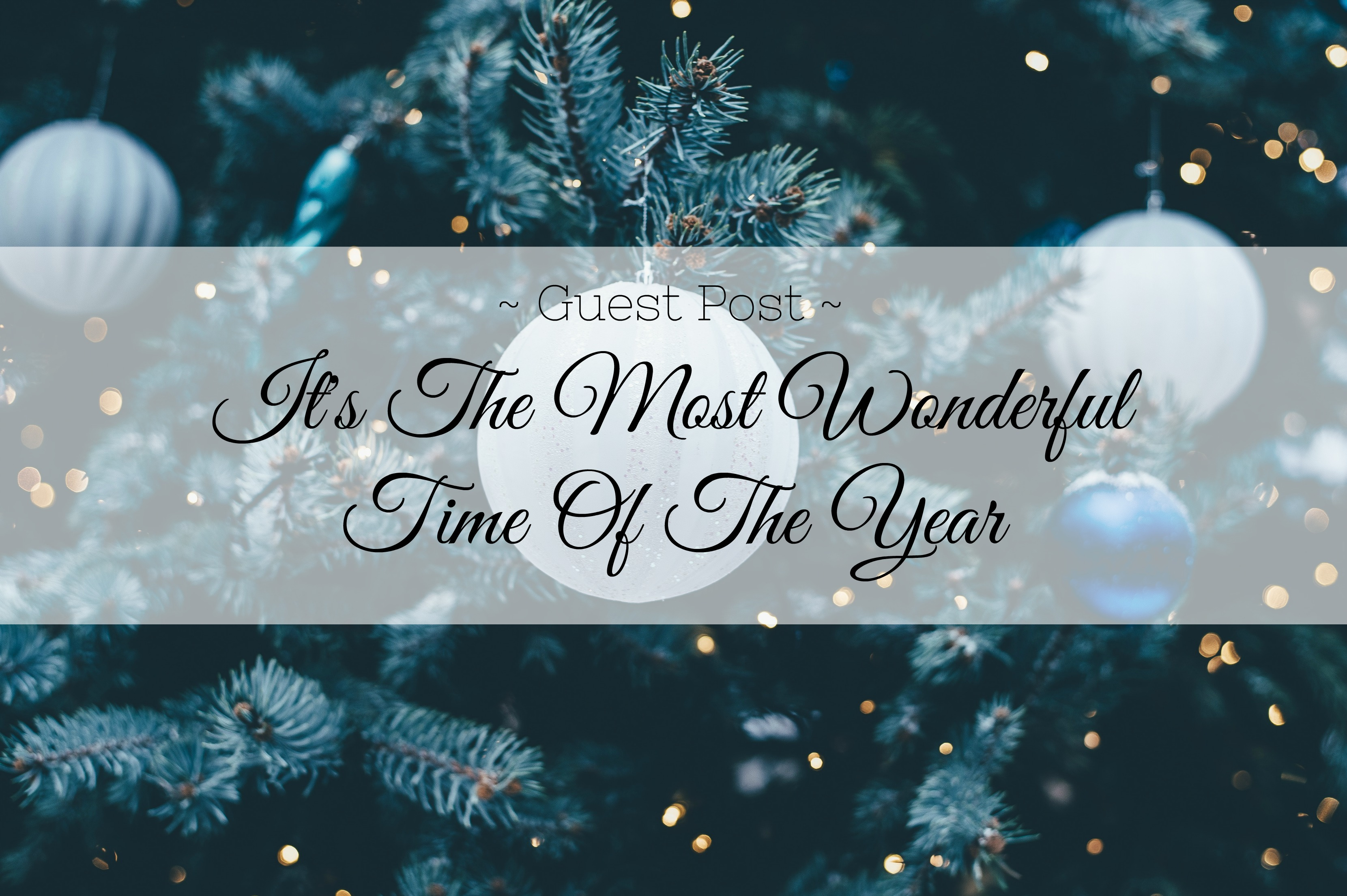 wonderful time of year christmas title