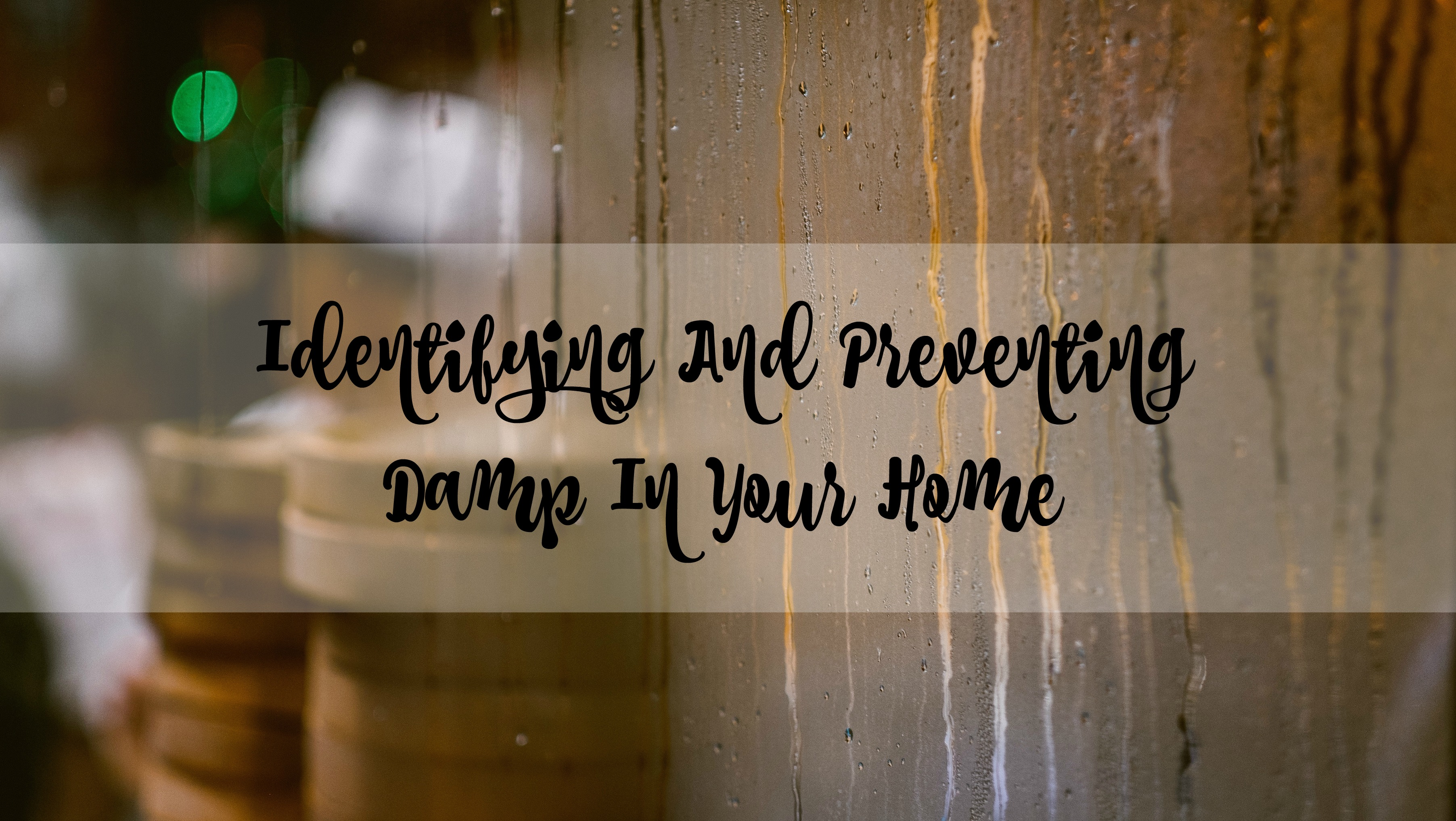 damp home title