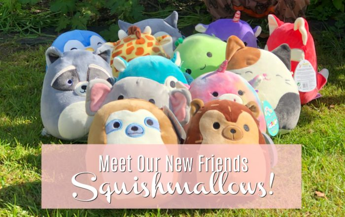 Meet Our New Friends – Squishmallows! #Review