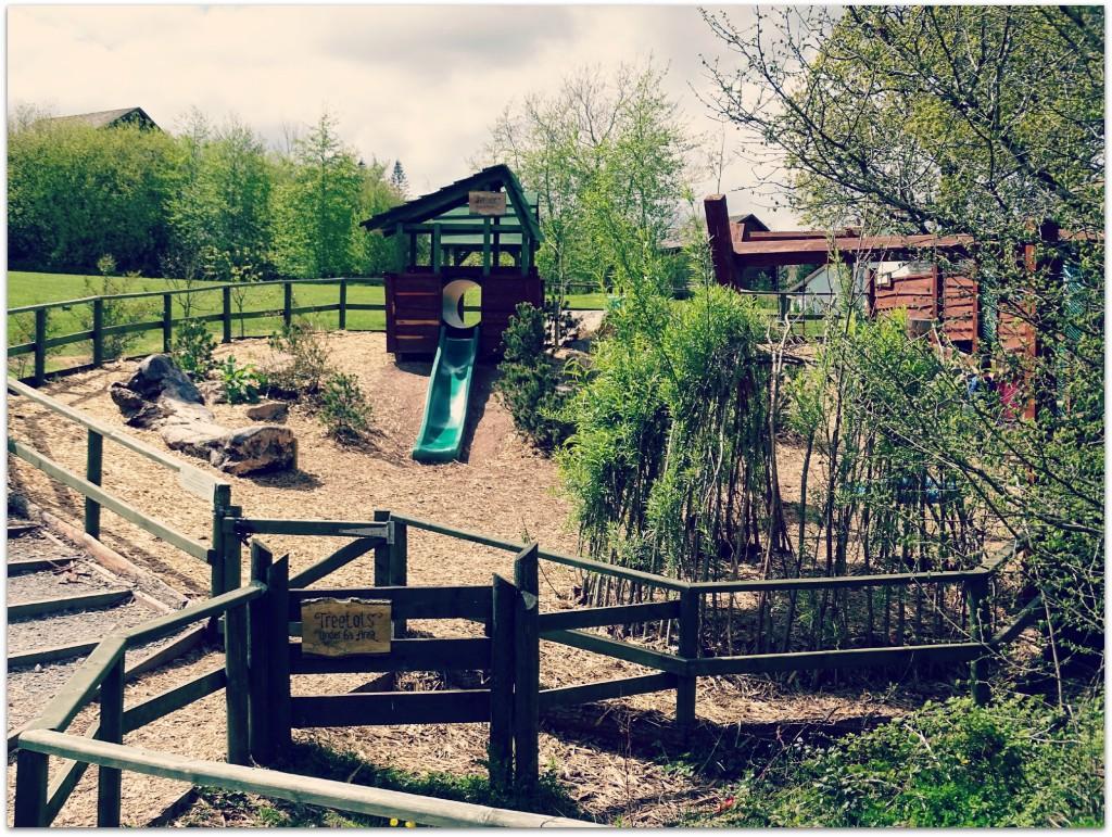 Bluestone Treetop Playground