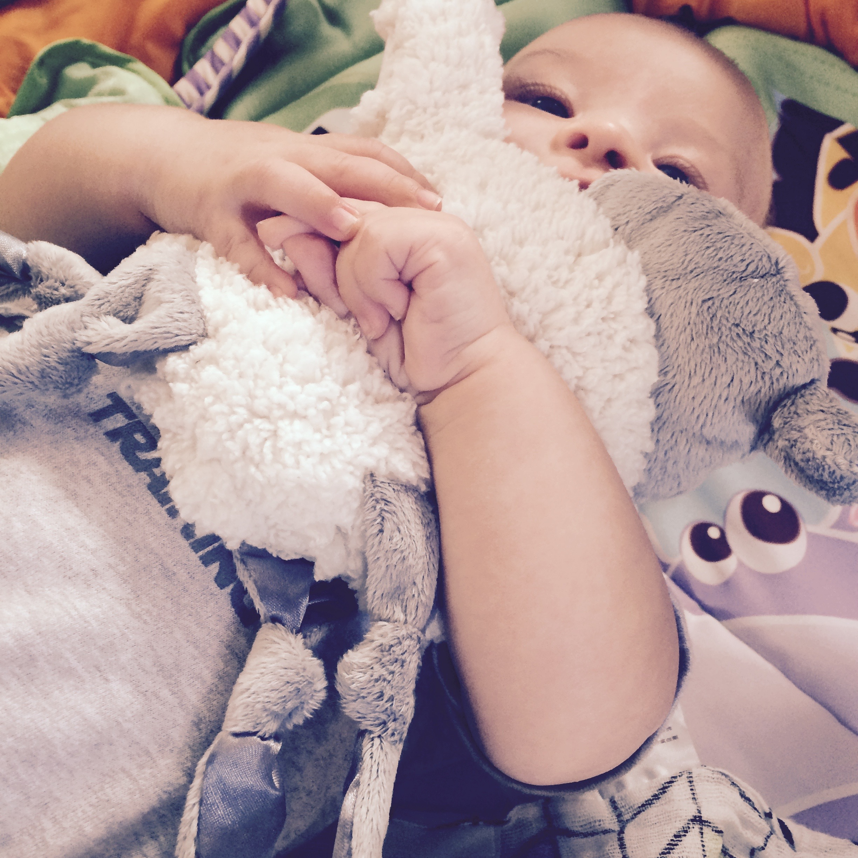 ewan snuggly