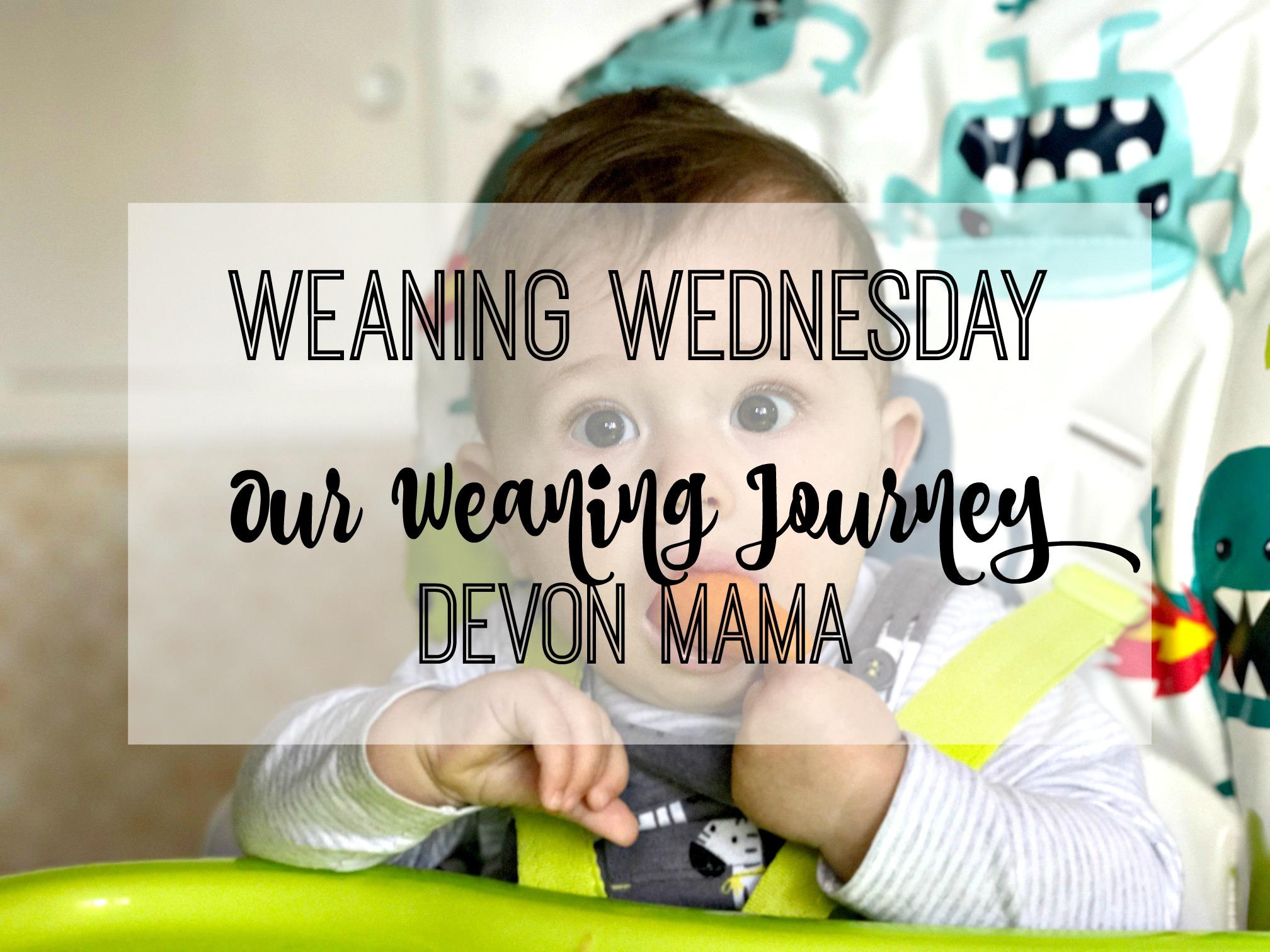devon mama weaning journey title