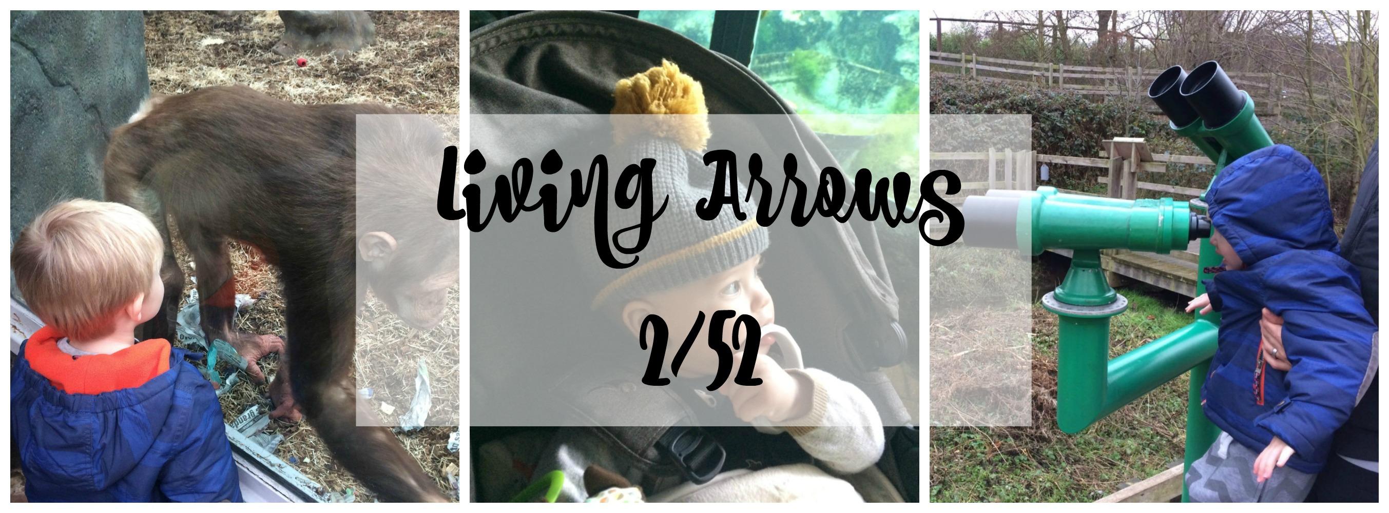 living arrows 2 title