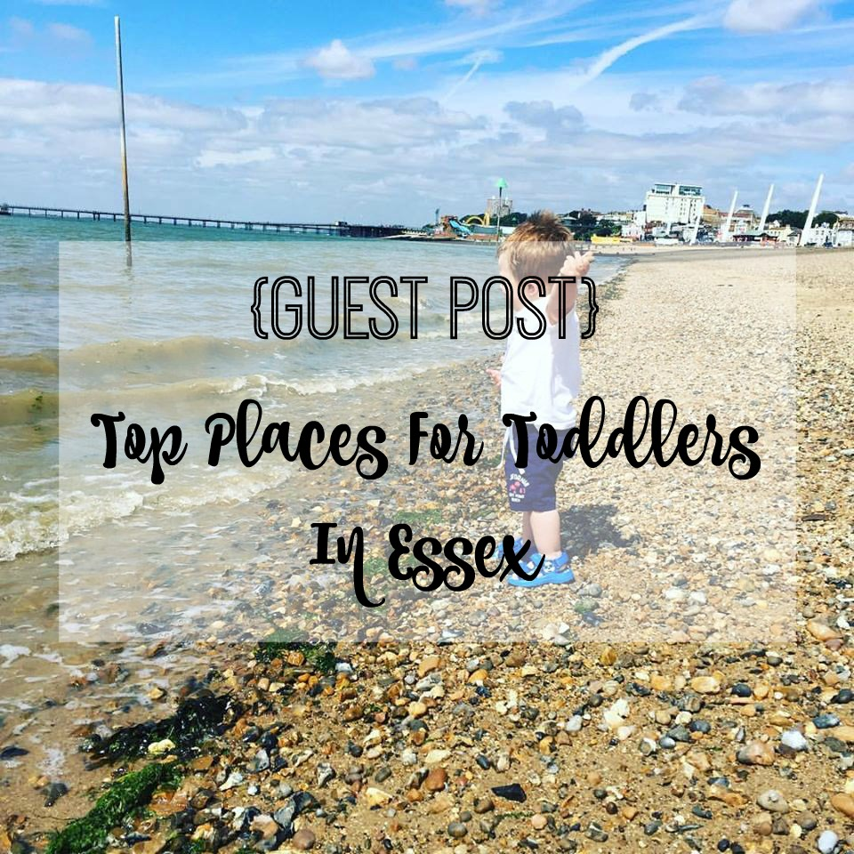 top places in essex for toddlers title