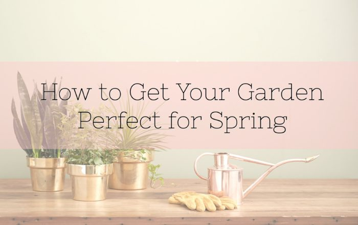 How to Get Your Garden Perfect for Spring