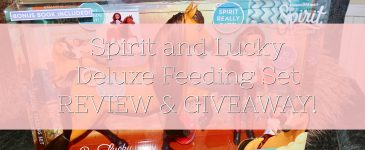 Spirit and Lucky Deluxe Feeding Set – REVIEW & GIVEAWAY!
